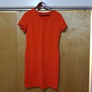 Shirt Dress (tall)